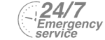 24/7 Emergency Service Pest Control in Hornchurch, RM11, RM12. Call Now! 020 8166 9746