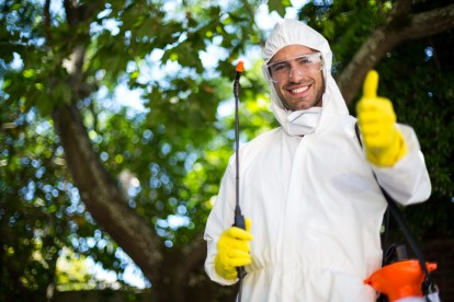 Pest Control in Hornchurch, RM11, RM12. Call Now 020 8166 9746